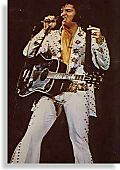 Elvis-1lds